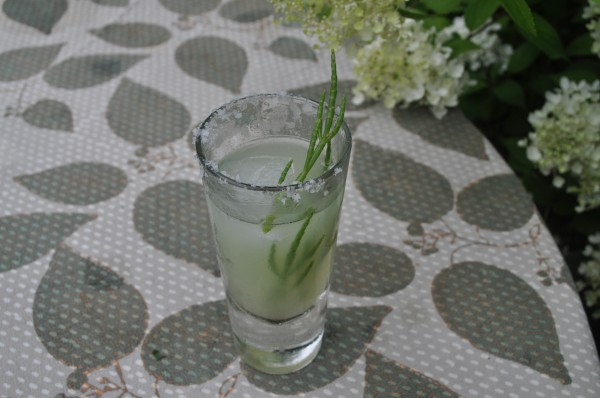 Samphire, Bombay Sapphire gin, and cucumber cocktail