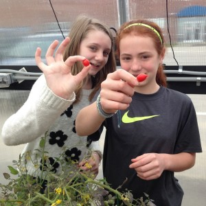 Ecology club students with tomatoes