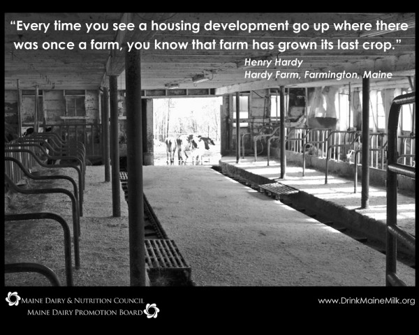 Hardy quote