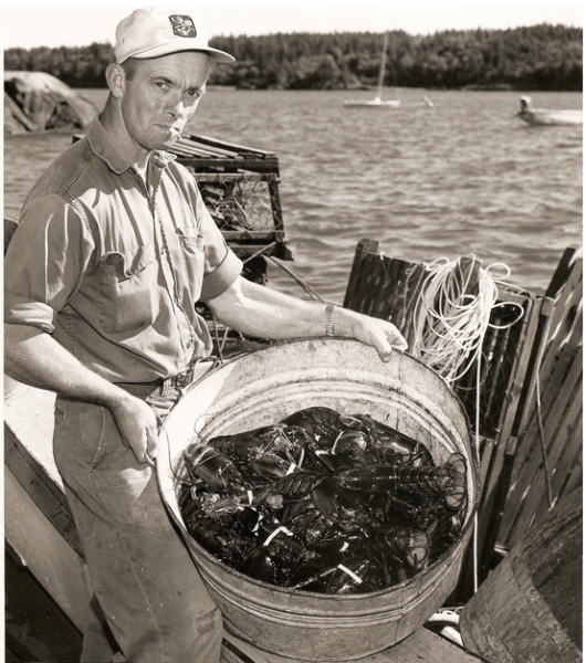 My grandfather, with a tub full of lobster and a pocket full of cash.  Photo courtesy of Delia Farris