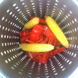 steamed lobster and corn