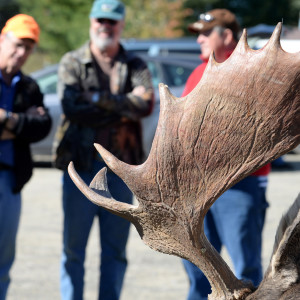 Spectators watch as moose are brought to the Ashland tagging station on the first day of the 2015 Maine moose hunting season. Linda Coan O'Kresik | BDN