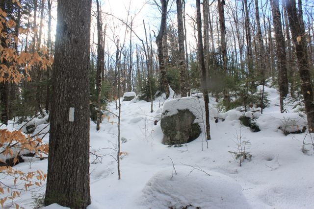 Much of the trail was uphill on the way in, and the snow was yet to be packed down by snowshoes.