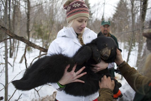 BDN photo by Brian Feulner
