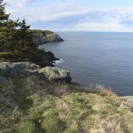 BDN photo by Aislinn Sarnacki. A view from White Head on Monhegan Island in May 2014.