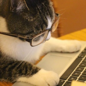 Arrow doing research with his specs on.
