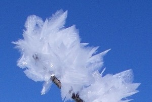 Feather_ice_1,_Alta_plateau,_Norway