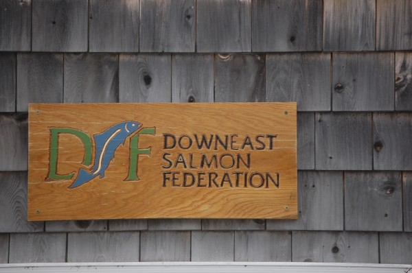 The Down East Salmon Federation.