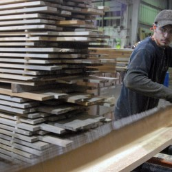 Richard Gilman of West Branch Heritage Timber LLC. pulls a plank out of the sawmill at the company's Golden Road mill in Millinocket on Thursday, Jan. 5, 2011.