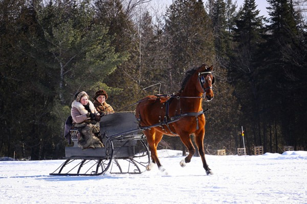 Driver Emily Hawkins and an unidentified passenger ride in a sleigh behind Molly, a Morgan mare, during last year's sleigh rally at the Beem Farm in Palmyra. This year's rally is set for Feb. 11.