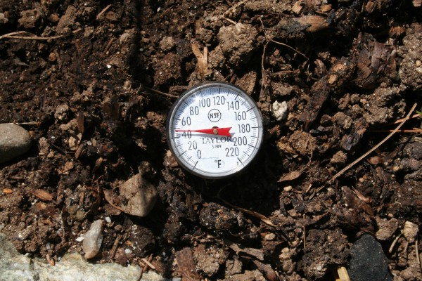 Photo taken the third week of April showing that soil temperature is the best indicator of sowing and planting times.
