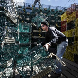 It's not your momma's lobster: How to re-imagine and sell Maine seafood