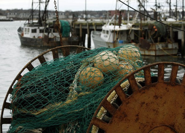 Fishing boats are tied up at a wharf in Portland, Maine, in this file photo. NOAA Fisheries said this week that job losses have continued as the industry consolidates.