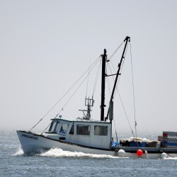 Fishing job losses continue as landings rise, NOAA says
