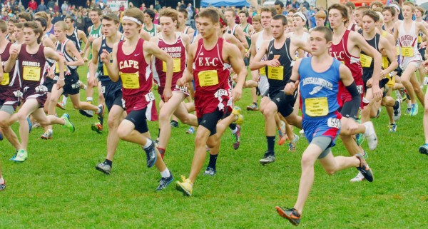 The varsity boys race begins at the Cross Country Festival of Champion at the Troy Howard Middle School in Belfast, Saturday, Sept. 29 2012.