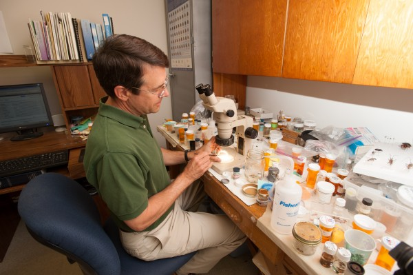 Insect Diagnostician Clay Kirby sits at his desk with samples at the University of Maine's pest management diagnostic facility on College Avenue in Orono.