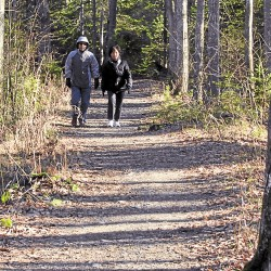 Bundled against the mid-November cold, two people walk along East Trail in Bangor City Forest.
