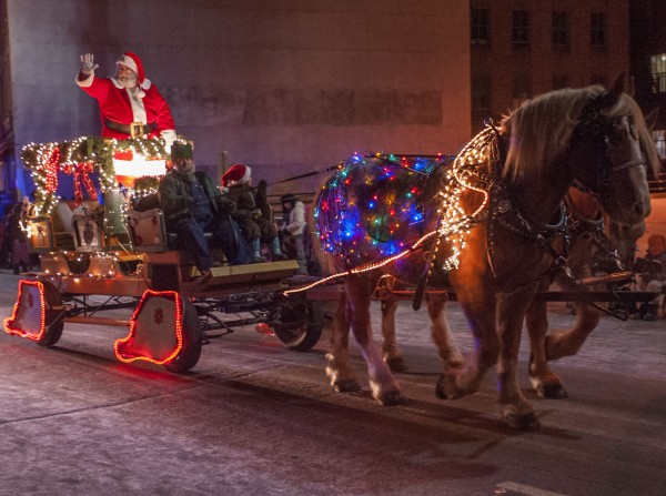 The Knox Valley Belgian Farm draws the master of ceremonies through the Festival of Lights parade in downtown Bangor on Saturday.