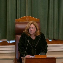 Leigh Ingalls Saufley, Maine Supreme Judicial Court chief justice, gives the State of the Judiciary address in the State House chamber on Thursday, Feb. 21, 2013.