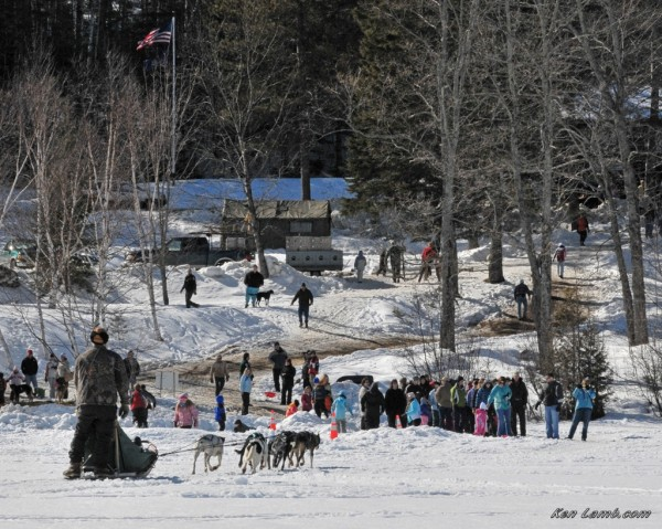 A dog sled team offers rides at the 2012 Winter Family Fun Day at Aroostook State Park.
