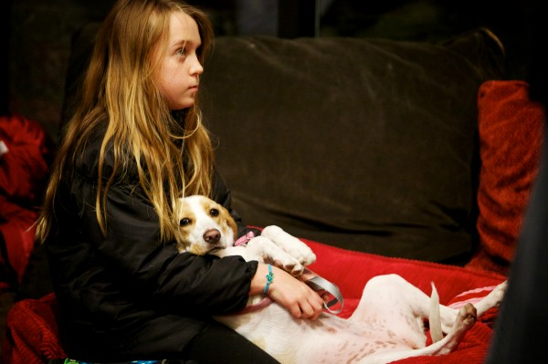 Noni Houck, 11, and her dog Lady relax before competing in the 9th annual Valentine's Day Canine Kissing Contest and Cocktail Party at the Planet Dog Company Store in Portland Tuesday night Feb. 12, 2013.