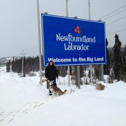 Belfast business takes travelers to the Arctic