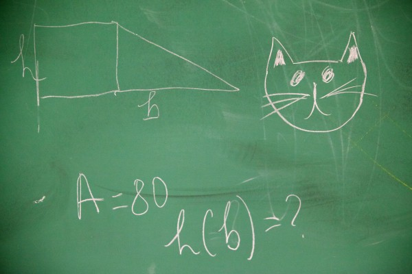 Geometry and a picture of Simba the cat adorn the chalk board in Tina Soucy's math class at Westbrook High School on Thursday.