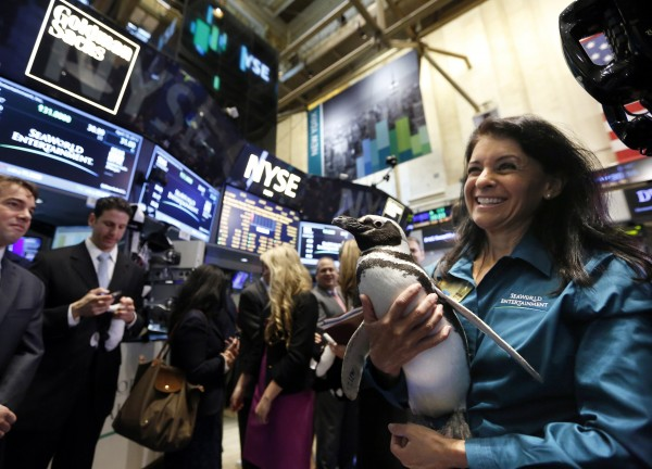 A penguin from SeaWorld is carried by its handler following the company's IPO on the floor of the New York Stock Exchange, April 19, 2013. Shares of SeaWorld Entertainment Inc., backed by Blackstone Group LP, rose as much as 22 percent in their market debut, valuing the theme park operator at $3.05 billion.