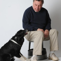 Mickey, a rescued border collie, sits with his master, Tom Duffy, during an interview on Wednesday.