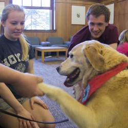 Second career mingles dogs, kids, books and love