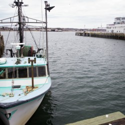 New system could aid fishermen, fish stocks