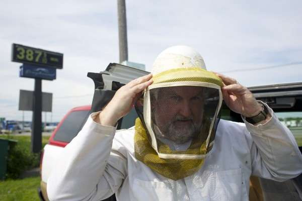 Beekeeper Peter Cowin places on his bee suit helmet to remove a decoy hive filled with about 20,000 bees from Dysart's Restaurant Friday afternoon in Hermon.