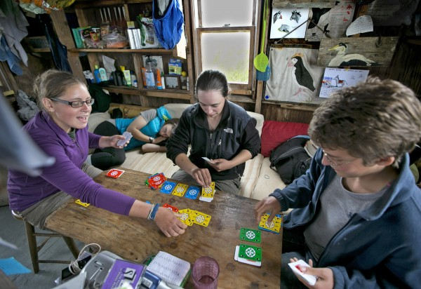 Kaitlyn Nafziger, Maggie Post, and Aspen Ellis, play cards while Kate MacNamee rests on the couch on a rainy day on Eastern Egg Rock.  Wet weather confines the field biologists to the island's small cabin.