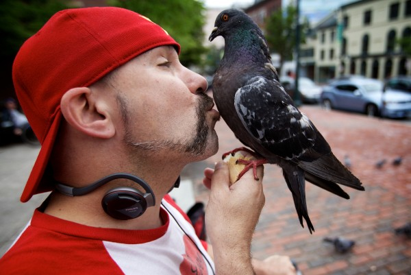 A pigeon gets a peck from Starr Sarabia in Portland's Congress Square where he visits the birds nearly every day.