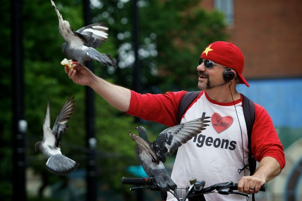 Pigeons flock to Starr Sarabia in Portland's Congress Square as he offers them bread and doughnuts.