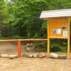 Hundred Acre Wood to open on Blue Hill peninsula