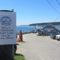 The parking lot for the Monhegan Boat Line in Port Clyde was the scene of a fatal crash Sunday afternoon when a car careened into people, a building and cars.
