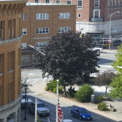 Revitalization plans for West Market Square