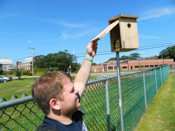 University of New England senior Brendan Emanuel looks in on the nest inside of a birdhouse placed on the perimeter of a school soccer field.