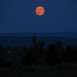 Glowing a reddish orange, a &quotblue moon&quot rises over the Dedham Hills. Photographed from Whiting Hill in Brewer, this moon is the third of four moons that will occur this summer.