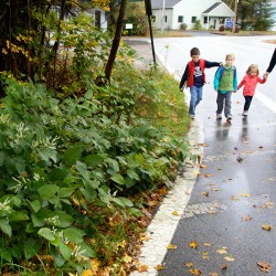 Carrie Lorfano walks her kids (from left) Corey, 7, Eben, 5, and Annie, 2, to school in Gorham Friday. The cost of raising a child to the age of 18 has grown from an inflation-adjusted $207,859 in 1990 to $241,080 today.