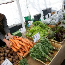 Gabrielle Gosselin arranges some carrots at her Six Rivers Farm stand at the Brunswick Farmers Market in May.