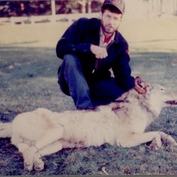 Genetic tests on an animal killed in 1996 near Aurora, about 35 miles east of Bangor, initially indicated it was a wolf, but later tests with improved techniques revealed it had been eating a diet of corn or animals that fed on corn. A state wildlife biologist says the animal &quotmost likely&quot was a wolf hybrid.