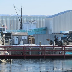 Rockland council talks end to dumping snow in the harbor