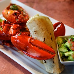Plan to replace Maine Lobster Promotion Council with new marketing entity moves forward