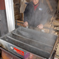 Maple Festival offers a sweet day at farm museum