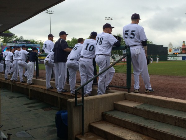 The University of Maine baseball team looks on from the dugout as Binghamton takes infield practice prior to Friday's America East tournament game in Lowell, Massachusetts.