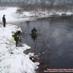 Be on the lookout: Four who were subject of Maine searches in 2013 still missing