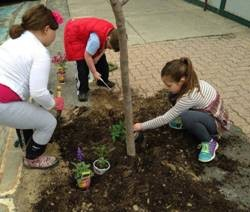 Getting an early start! Members and friends of Troop 1046 were eager to work on their site in front of the Maine Discovery Museum.
