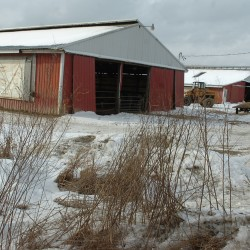 Federal judge sides with former Maine agriculture commissioner in lawsuit over Dixmont dairy farm's shutdown
